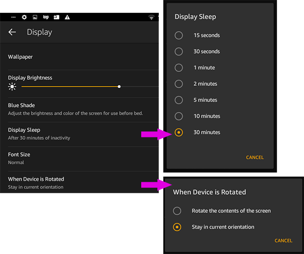 Using BridgeTab on Amazon Fire Tablets