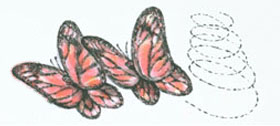 Two butterflies flying in circles