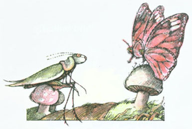 Two butterflies perched on a mushroom talking to a grasshopper