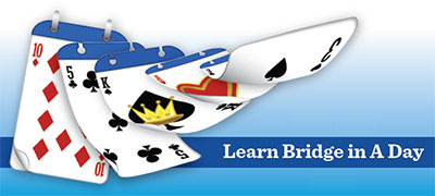 Learn Bridge in a Day